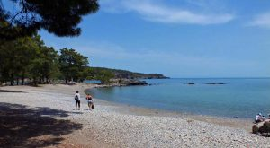 Beach-in-Phaselis-3-Large